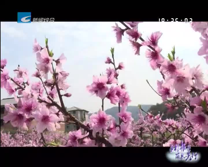 【乡村振兴丽水先行】