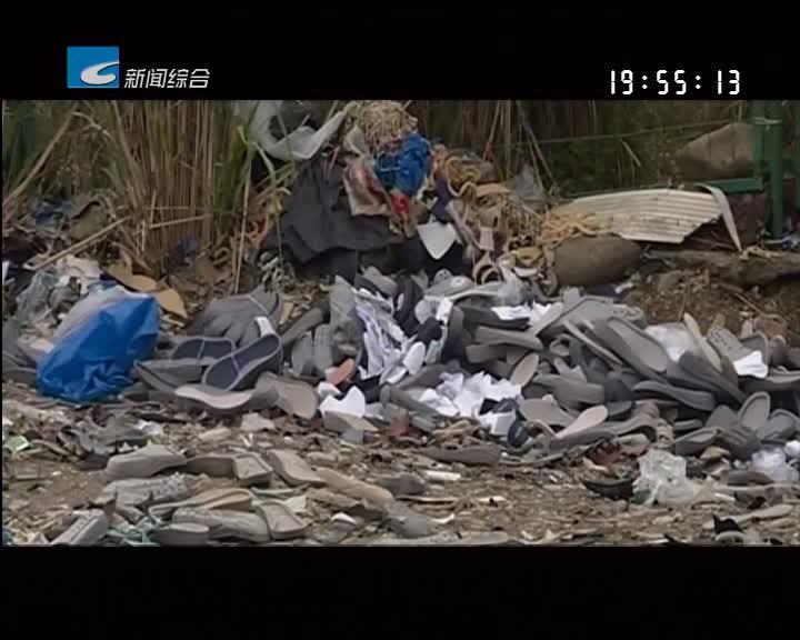 【每周聚焦】青田:垃圾倾倒问题多 环境治理要长效