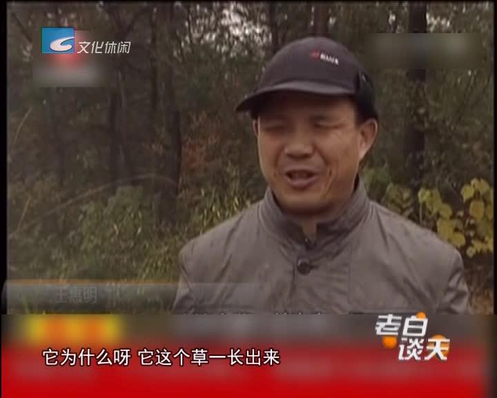 好人365:王惠明:失明的他 种下10万多棵树