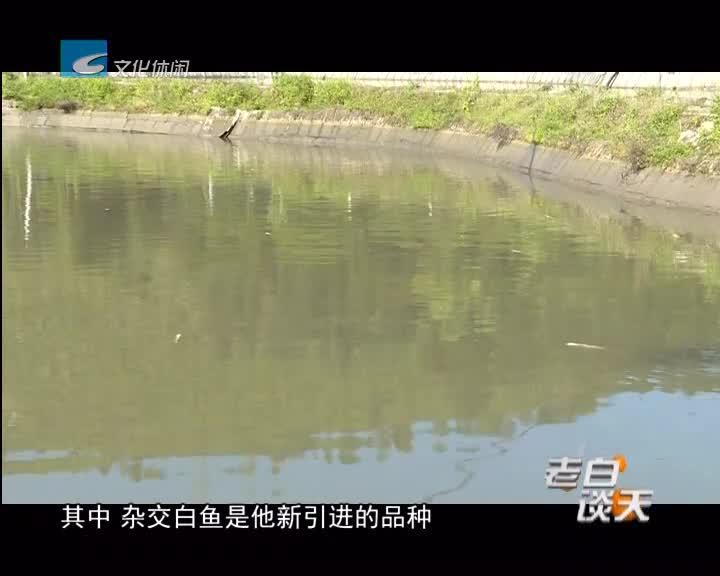 池塘鱼儿接连死亡 农技专家上门指导