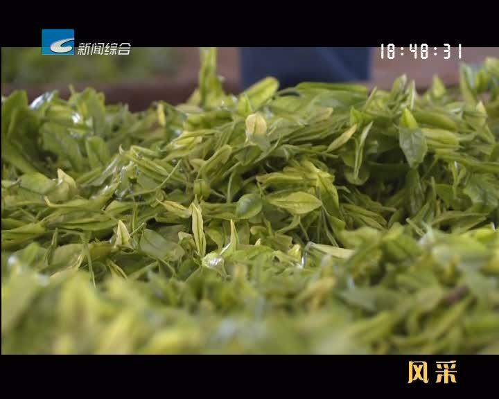 """【风采】松阳""""茶二代""""的""""两山""""探索之路"""