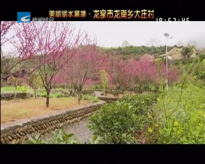 美丽丽水展播:龙泉市龙南乡大庄村