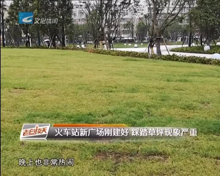火车站新广场刚建好 踩踏草坪现象严重