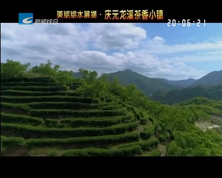 美丽丽水展播:庆元龙溪茶乡小镇