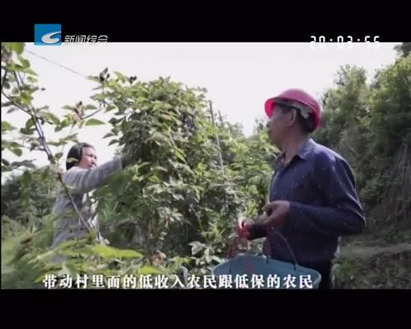 振兴路上的乡村故事:曾子平:从华侨到农民   带乡亲致富