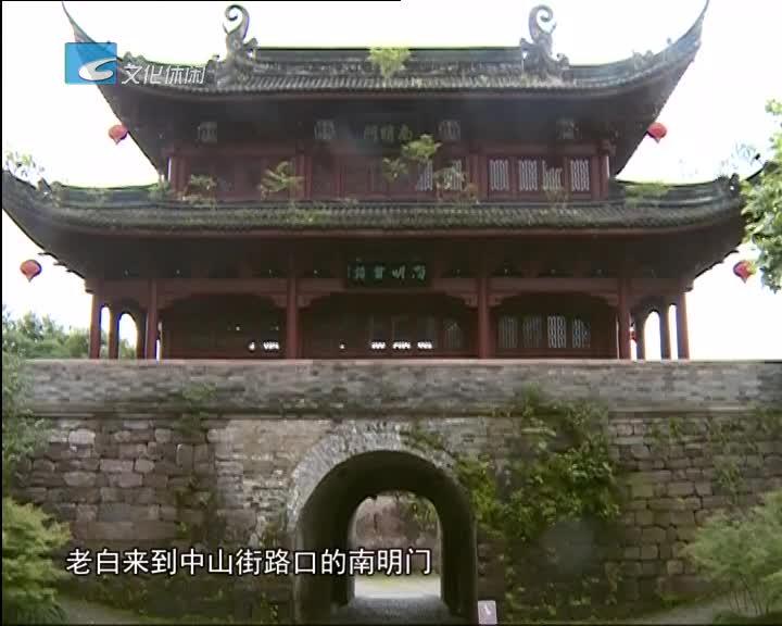 南明城墙杂树多 影响景观破坏建筑