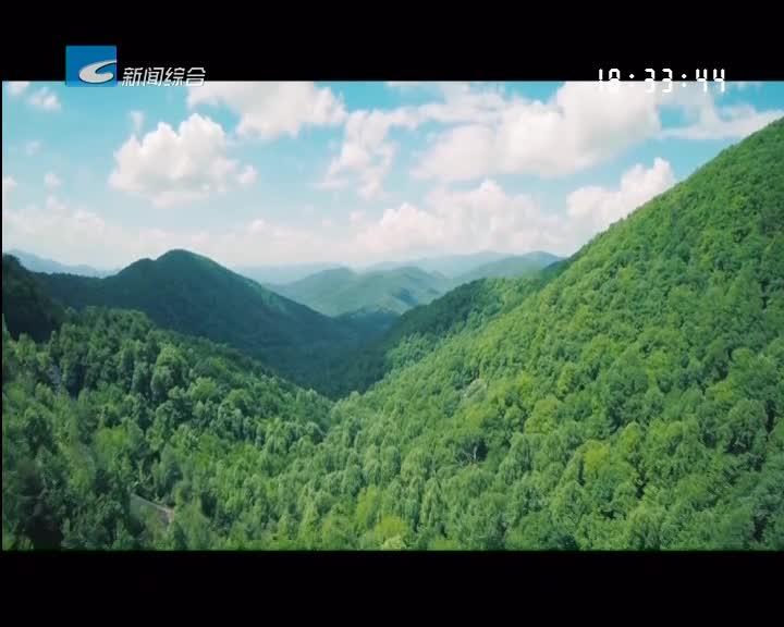 【委员视点】打造最美生态 着力森林质量提升