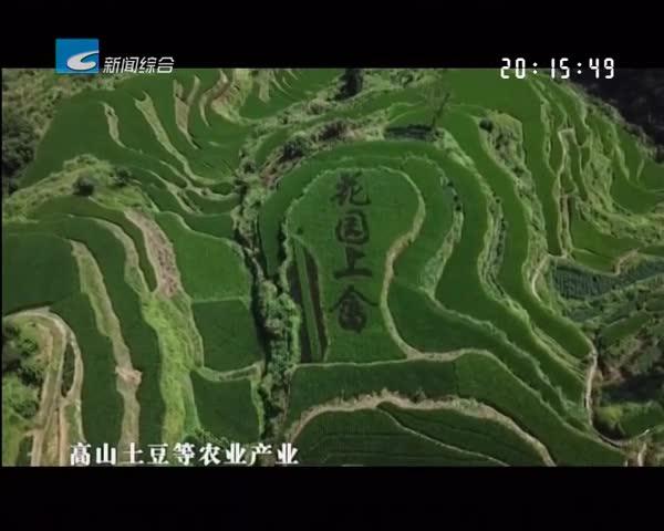 以稻田为画布 以水稻为笔墨 龙泉屏南镇献礼新中国成立70周年