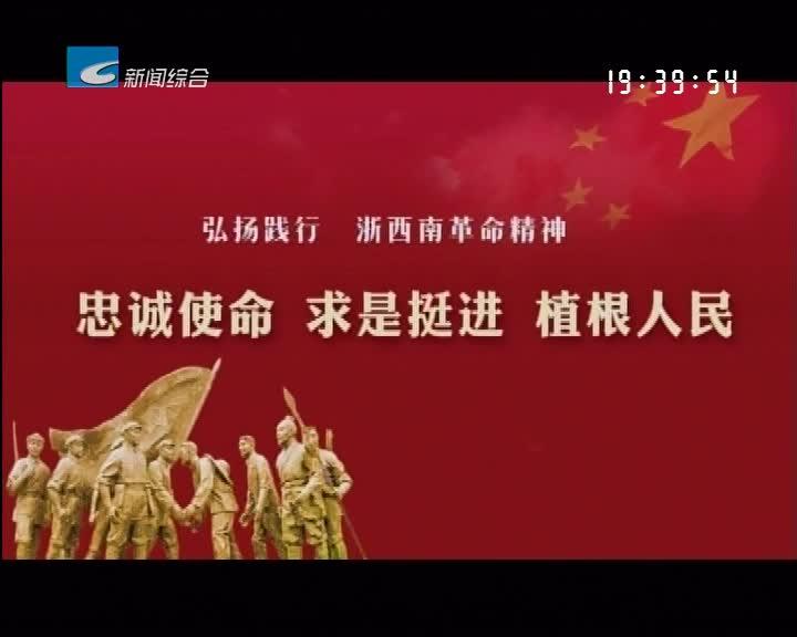弘扬践行浙西南革命精神:以浙西南革命精神为引领 全力打造红绿融合发展新高地