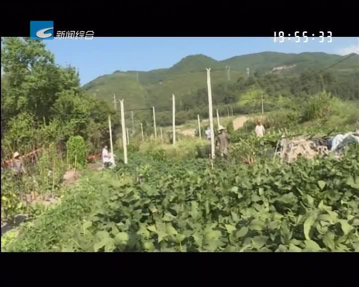 每周聚焦 反馈:庆元迅速整改原55省道洋墩区块环境脏乱差问题
