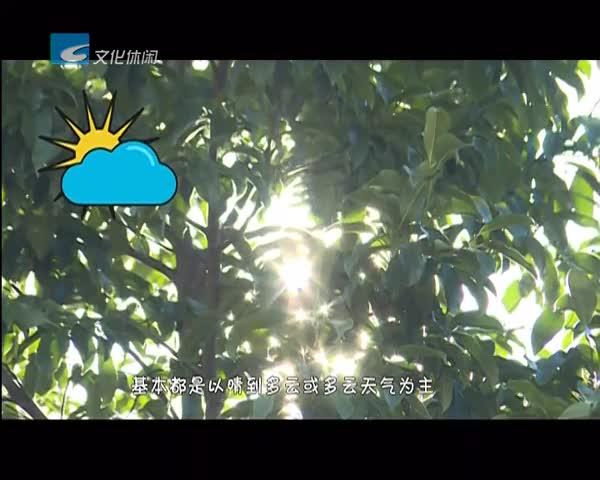 【莲都新闻】11.04