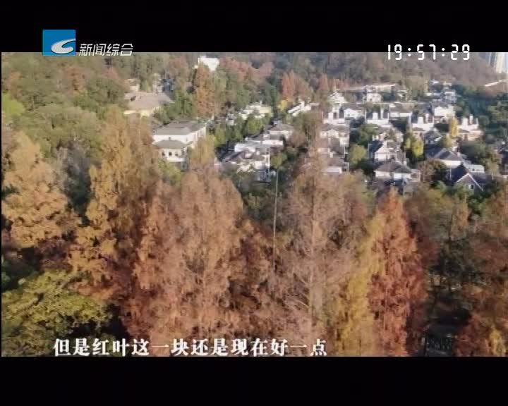 白云山:树树皆秋色 山山唯落晖