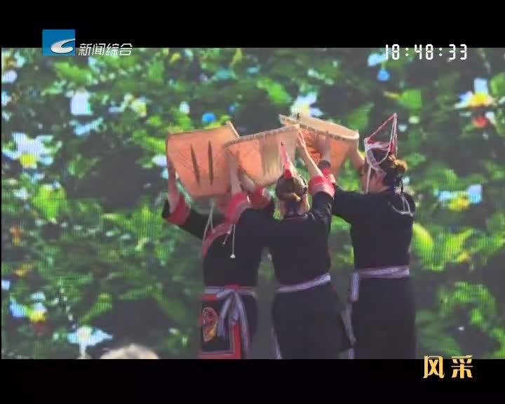 【风采】松阳裕溪:品味裕溪生态精品 建设油香特色小镇