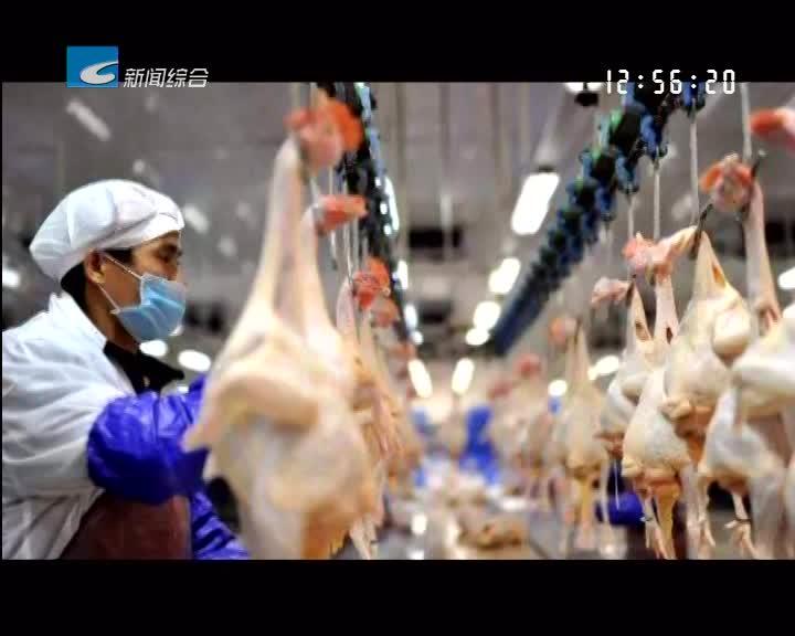 """【每周聚焦】景宁:家禽""""杀白上市""""工作执行不到位"""