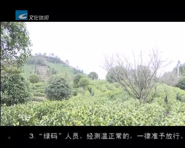 【莲都新闻】2.24