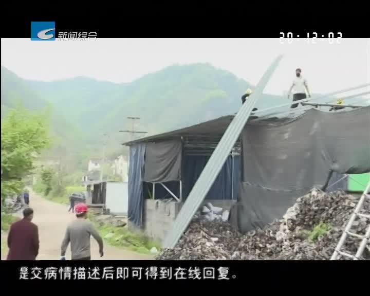 莲都:违法占地11000平方米 三处违法搭建制砖厂被拆除