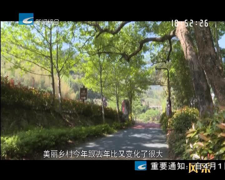 【风采】景宁:乡村振兴路上故事多