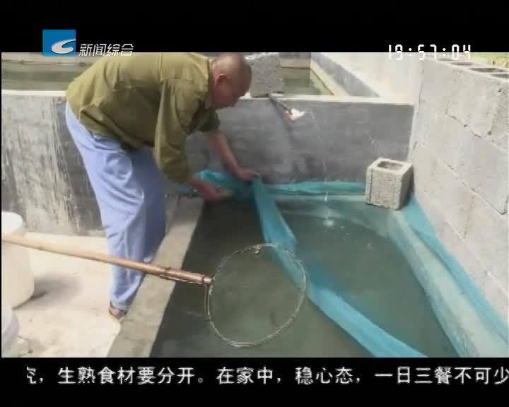 振兴路上的乡村故事:景宁鸬鹚:打造田鱼苗繁殖示范基地 促进农民增收