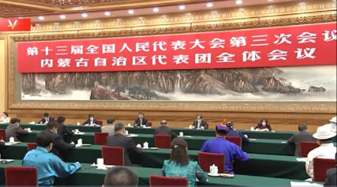 独家视频丨习近平参加内蒙古代表团审议