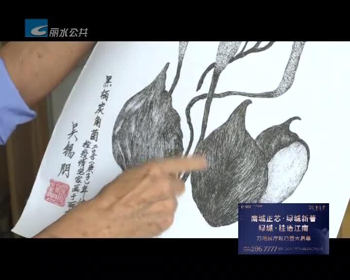 """36年手绘1355种菌菇 78岁老人汇编了一本菌菇""""百科全书"""""""
