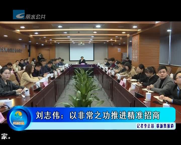 刘志伟:以非常之功推进精准招商