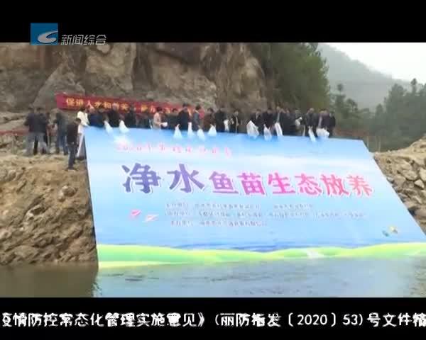 黄村水源水系举行生态放养活动 投放10万尾净水鱼苗