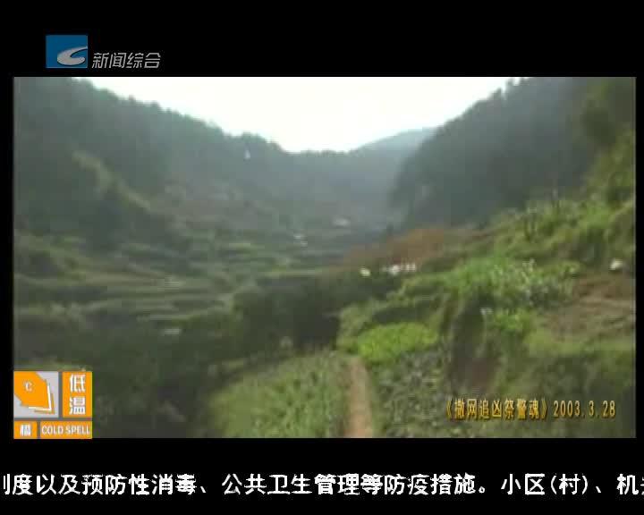 【瓯江警视】21年的警视路