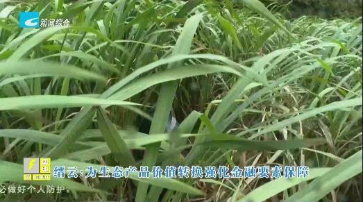 【风采】缙云:为生态产品价值转换强化金融要素保障