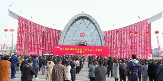 产业援疆:赶街电商发力 农博会现场直播助农