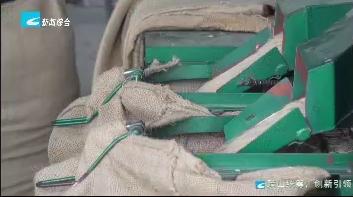 遂昌:订单+保险 农户种粮有保障