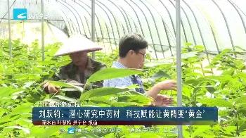 """共同富裕新征程:刘跃钧:潜心研究中药材 科技赋能让黄精变""""黄金"""""""